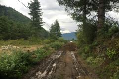 road2016_32